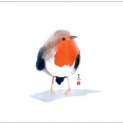 Grußkarten - Robin