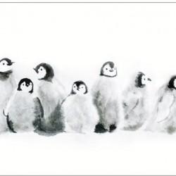 Pinguin-Grußkarten